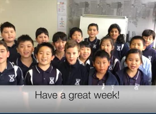 Weekly News Video